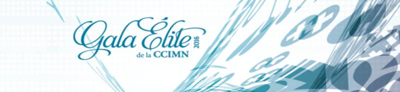 logo gala 2016 long